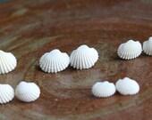 Ocean Flower - White Real Seashell Stud Earrings