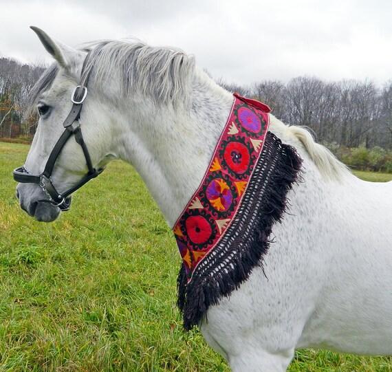 Vintage Uzbek Saye Gosha Segusha Hand Embroidered Textile Uber Kuchi