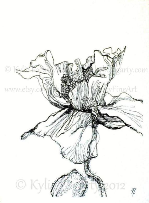 "Botanical Art - Poppy Print - Mother's Day Gift - Black and White - Poppy Flower - Drawing, 4 x 6 Fine Art Print, ""Poppy Study 3"". Garden"