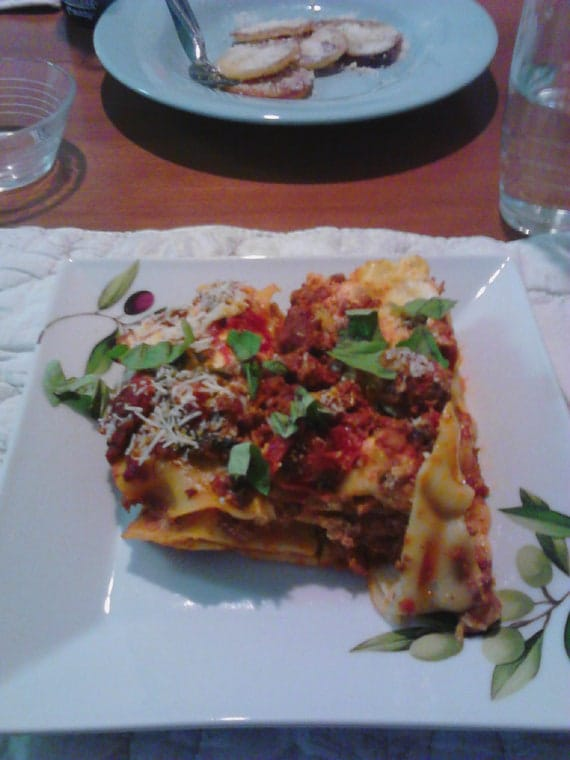 Make Your Own Nana's Sicilian Organic Lasagna - Delicious Every Time - Crowd Pleaser - INSTANT DOWNLOAD