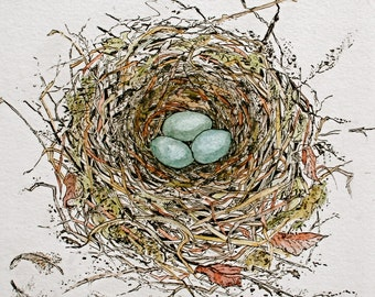Robin's nest Greeting Card. Blank. 6''x6''