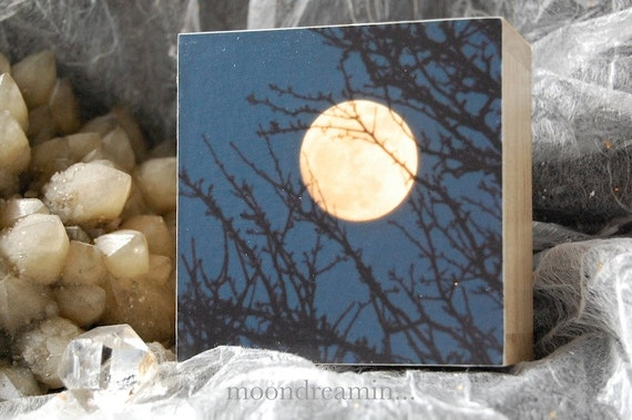 Release, Full Moon rising behind Hawthorn, photograph, photo, 3.25inch wooden box-frames, photo block