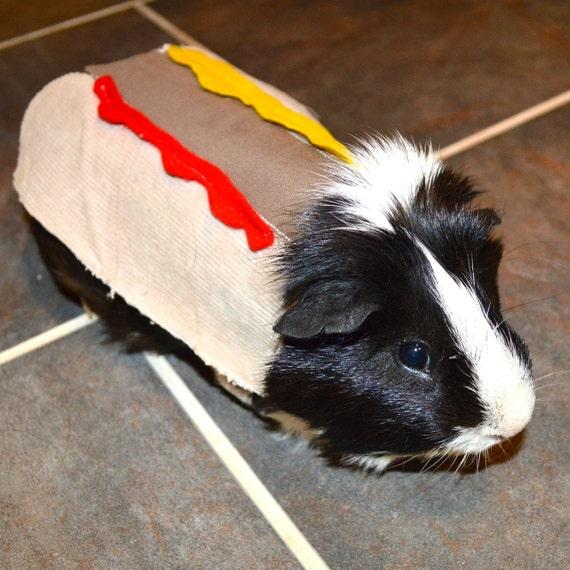 Guinea pig hotdog. Pet Halloween costumes by la Marmota Café.