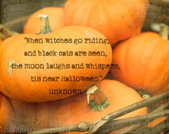 Pumpkins Orange Fall Autumn Halloween Witches Quote Orange Fall Decor October Harvest Mini Pumpkin Fall, Fine Art Print