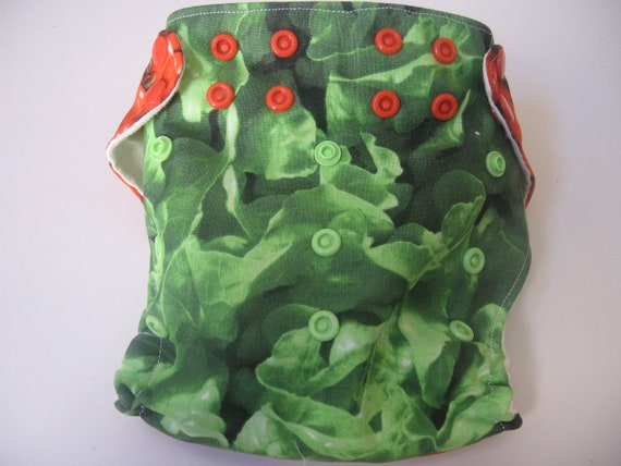 One Size Salad Pocket Diaper