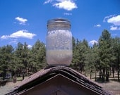 "San Francisco Peaks ""Extra Sour"" Wild Sourdough Starter / Wild Yeast"