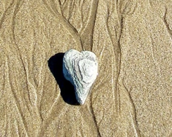 Love, Heart, sand, beach, stone, top image is close up, 2nd is the full image, 4x6 mounted on 5x7 card G5996
