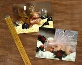 Set of 2 mini Cards - Sugar faeries - mini print set