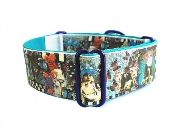 Whimsical Wings Martingale Dog Collar
