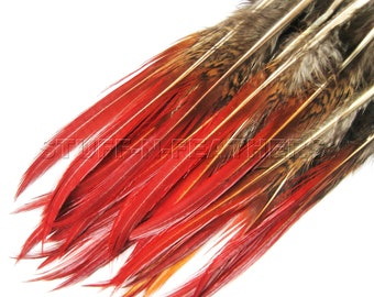 Wholesale / bulk feathers - natural Golden pheasant feathers red tip for millinery, jewelry, crafts, 60 pcs / 4-6 in (10-15 cm) long / FB68