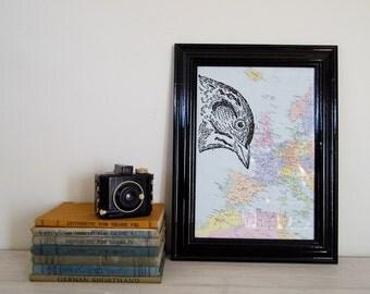 Bird Print on Framed Vintage Map of Europe, A4