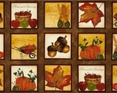 CLEARANCE - Beauty of Autumn Collection - Fall Harvest  Sampler PANEL - South Sea Imports
