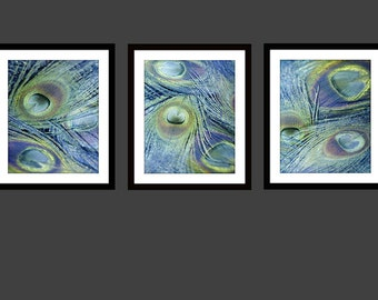 Peacock, Peacock Art, Peacock Print, Peacock Feather Photography Photos Triptych 16x20 11x14 8x10 5x7 Periwinkle Blue Lavender Purple Green