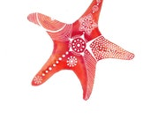 Red-Rust StarFish Archival Art Print