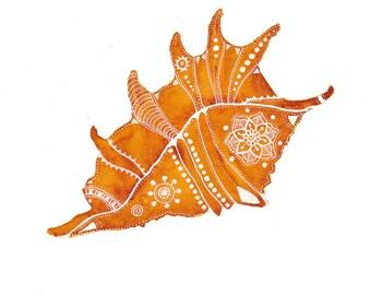Yellow-Orange Sea Shell Archival Art Print