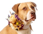 Country Western Wedding Corsage for Dogs: Autumn / Fall Flower Girl, Ring Bearer, Pet Attendant (Pet Accessories)