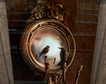 "Reflection on Perception --A 12"" x 18"" illustration of a crow perched upon an ornate Victorian mirror"