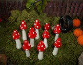 FREE shipping 10 miniature  fairy garden mushrooms red terrarium miniature toadstool woodland