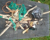 Coastal Treasures assortment  of DRIFTWOOD, mussel shells, rope, seaweed