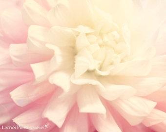 Flower Photography - Nursery Art - Dahlia Photograph - Flower Photo - Macro - Fine Art Photography Print - Pink White Home Decor