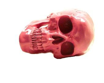 skull head, macabre, day of the dead, sugar skull, pink halloween, home decor