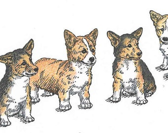 """Welsh Corgi """"Puppies-in-a-Row"""" pen and ink drawing"""
