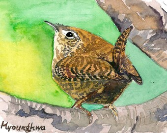ACEO Limited Edition - Wren in the forest