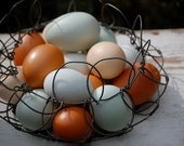 Eggs Basket Farm Nature Photograph Fine Art Print Farmhouse