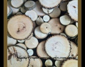 100 PLUS tree branch wood slices in various sizes