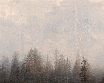 "The Fog 8""X24"" photograph."
