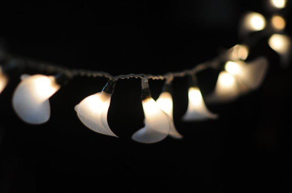 Modern String Lights Indoor : SALE SALE 20 White calla lilies modern flower by cottonlight