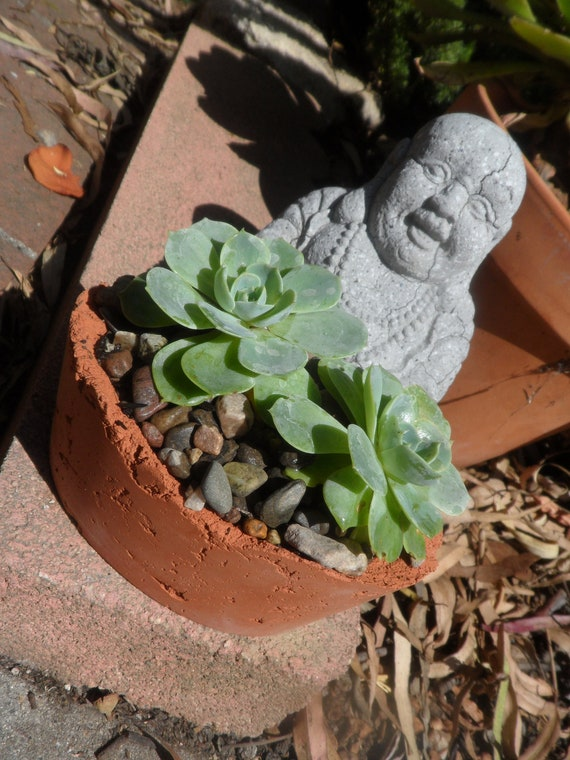 Beautiful small oval terracotta tinted cement planter
