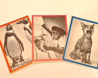 Set of 3 Assorted Unused Vintage Cards with Envelopes