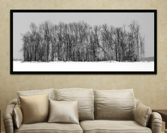 Fine Art Photography - Winter Trees, Large Wall Art, Black and White Art, Home Decor