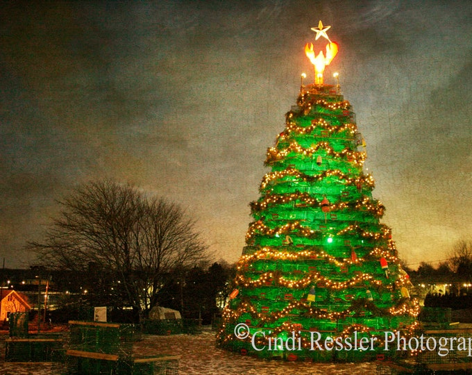 Lobster Trap Christmas Tree, Photography, Maine Photography, Christmas