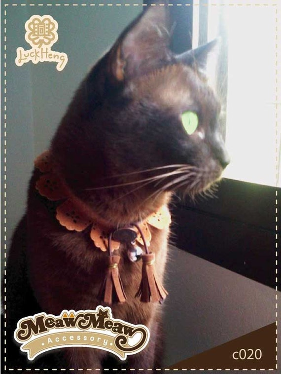 Cat Collar Country