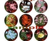 "Victorian Floral  1"" Circle Images Digital Collage Sheet Bottle Cap Images  Printable"