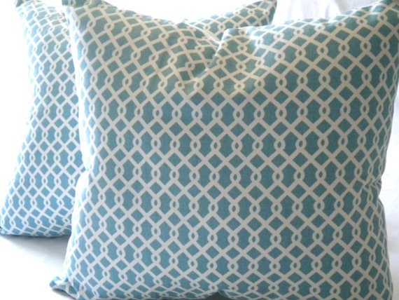 Decorative Cover  - Robin egg blue and white - 16 x 16 pillow cover