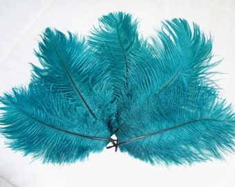 Teal Ostrich Drab Feathers Wholeasale Bulk Lot Blue Green Costume Craft Design Supply Hair Hat