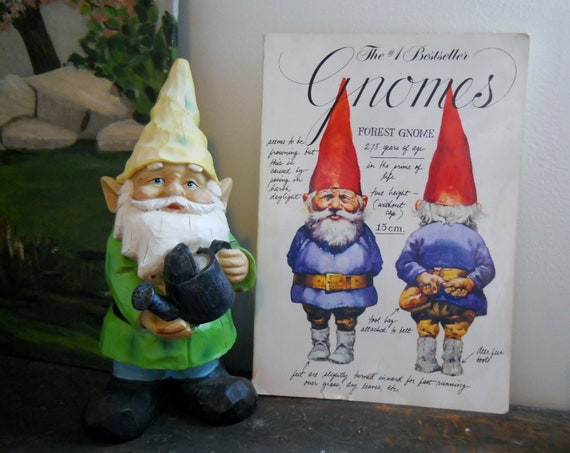 Gnomes - illustrated book of gnome history & lore