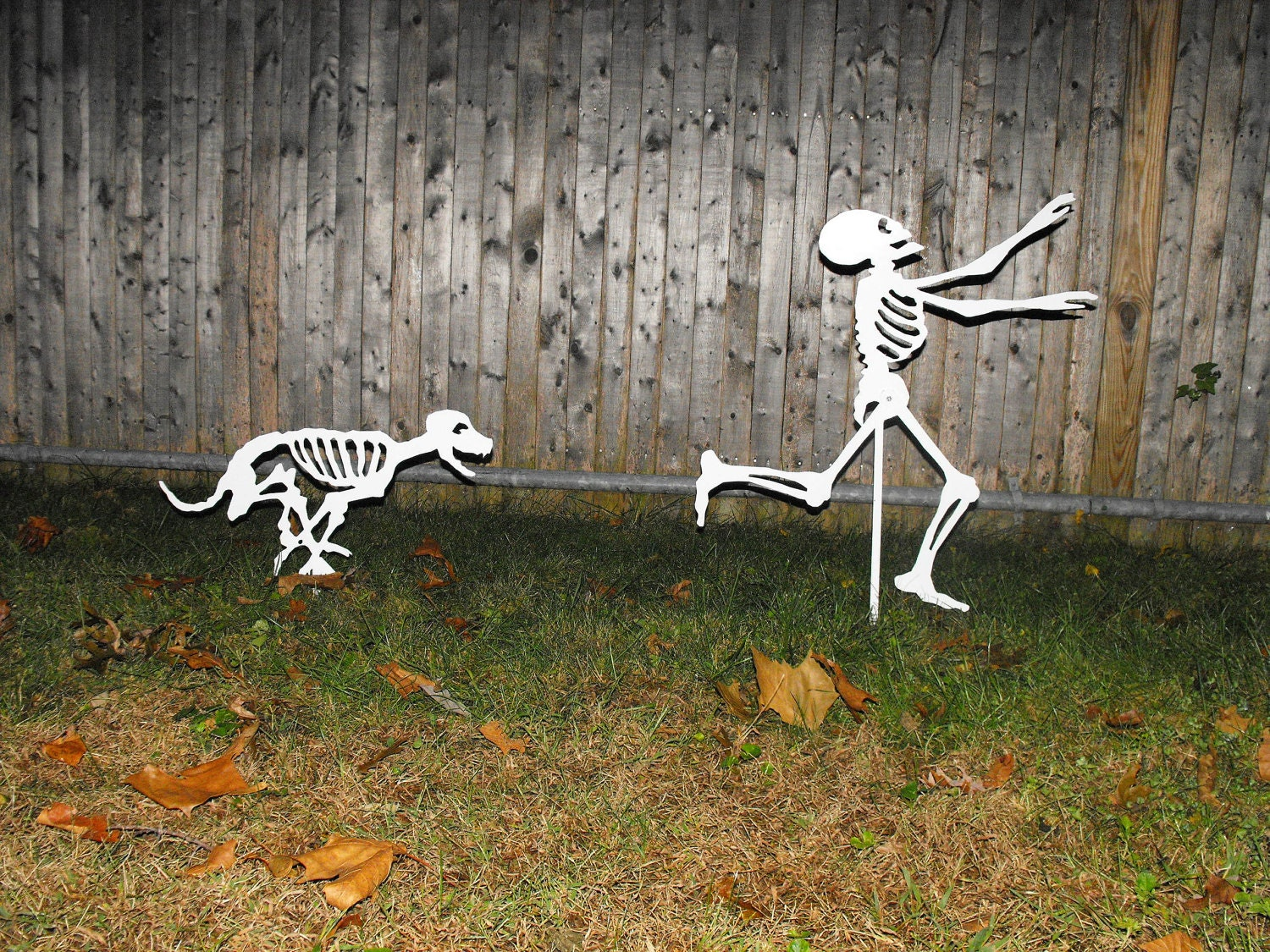 Halloween yard skeletons dog skeletons chasing by for Halloween decoration yard