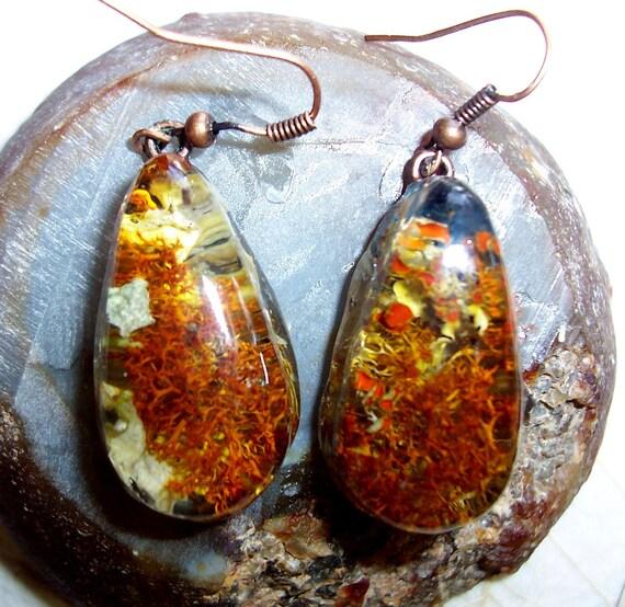 Lichen Medium Resin Earrings (E29)