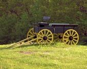 Antique Horse Drawn Wagon Photo