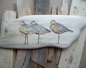 Painting on Driftwood - Sleepy Sandpipers