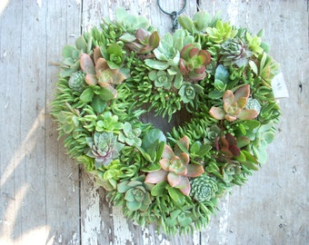Succulent Heart Wreath 11 inch diameter
