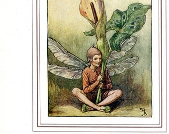 Antique Color Book platePlate Print Vintage Bookplate Book of Flower Fairies The Lords-and-Ladies Fairy Cicely Barker 1937