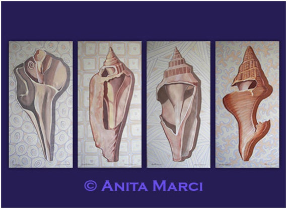 "Anita Marci's ""Shell Interiors I,II, III, IV""  Four 15"" x 30"" Original Acrylic on Stretched Canvas Paintings"
