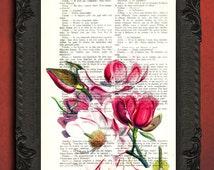 magnolia flower art, magnolia illustration, magnolia tree print, flower art print, pink flowers decor, garden flowers art