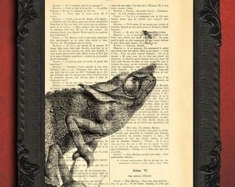 Chameleon hunting for mosquito art print - upcycled french book dictionary art print - vintage book page, recycled paper