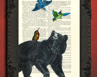 black bear and hummingbirds art print black bear art black bear wall art
